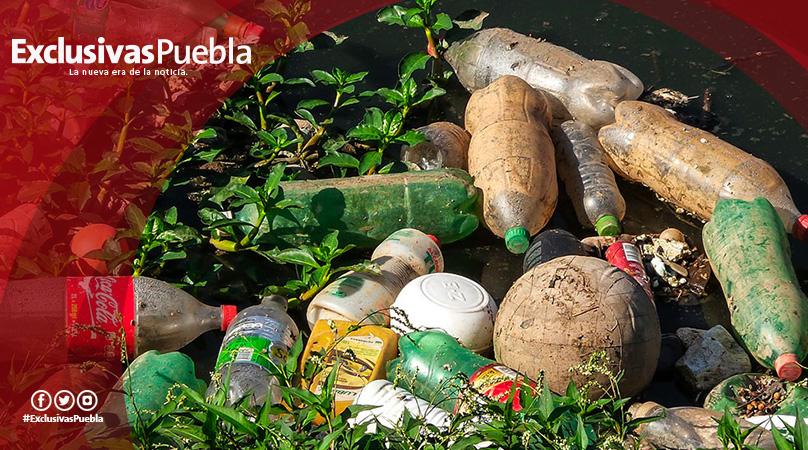 ¡Ya son un hecho las losetas hechas de PET reciclado!