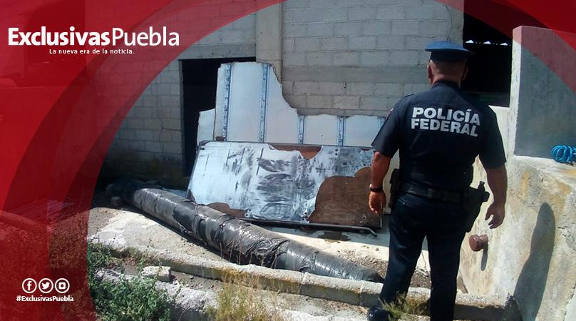 Recupera la Fiscalía y Policía Federal un millón de pesos en mercancía.