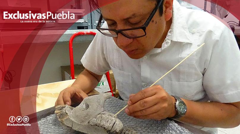 Descubren restos de mamut de la Edad de Hielo en San Luis Potosí